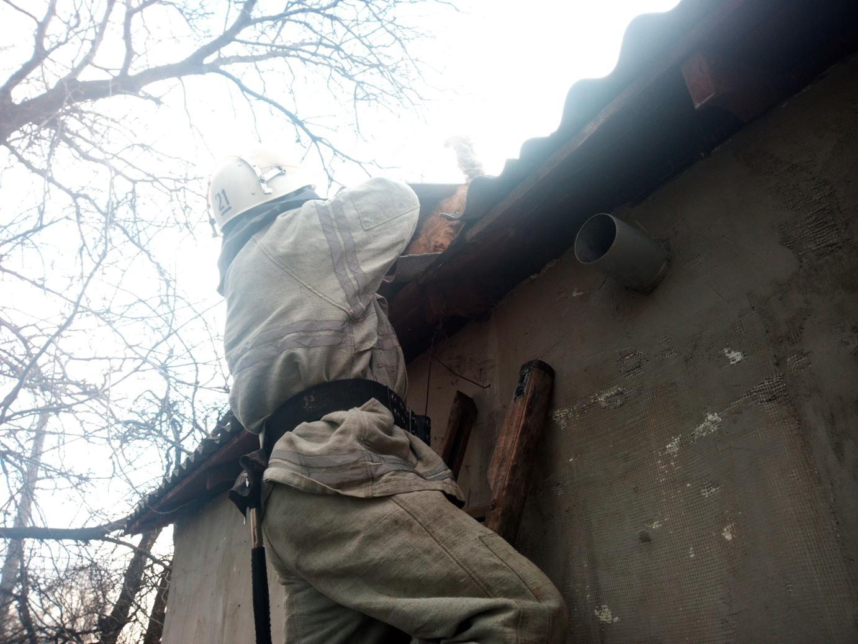 На Кіровоградщині врятовано двох домашніх улюбленців (ФОТО)