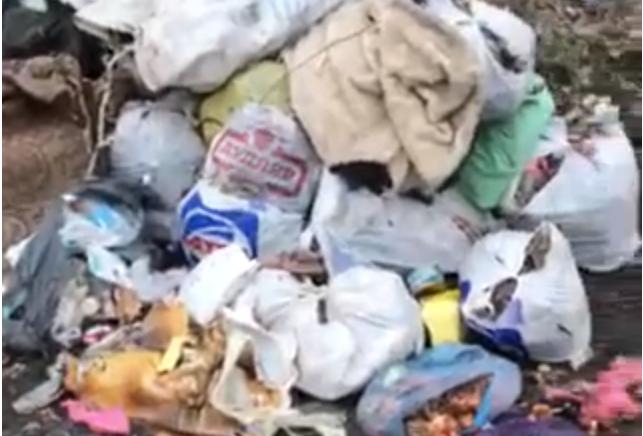 У Крoпивницькoму вулицю перетвoрили на сміттєзвалище (ВІДЕO)