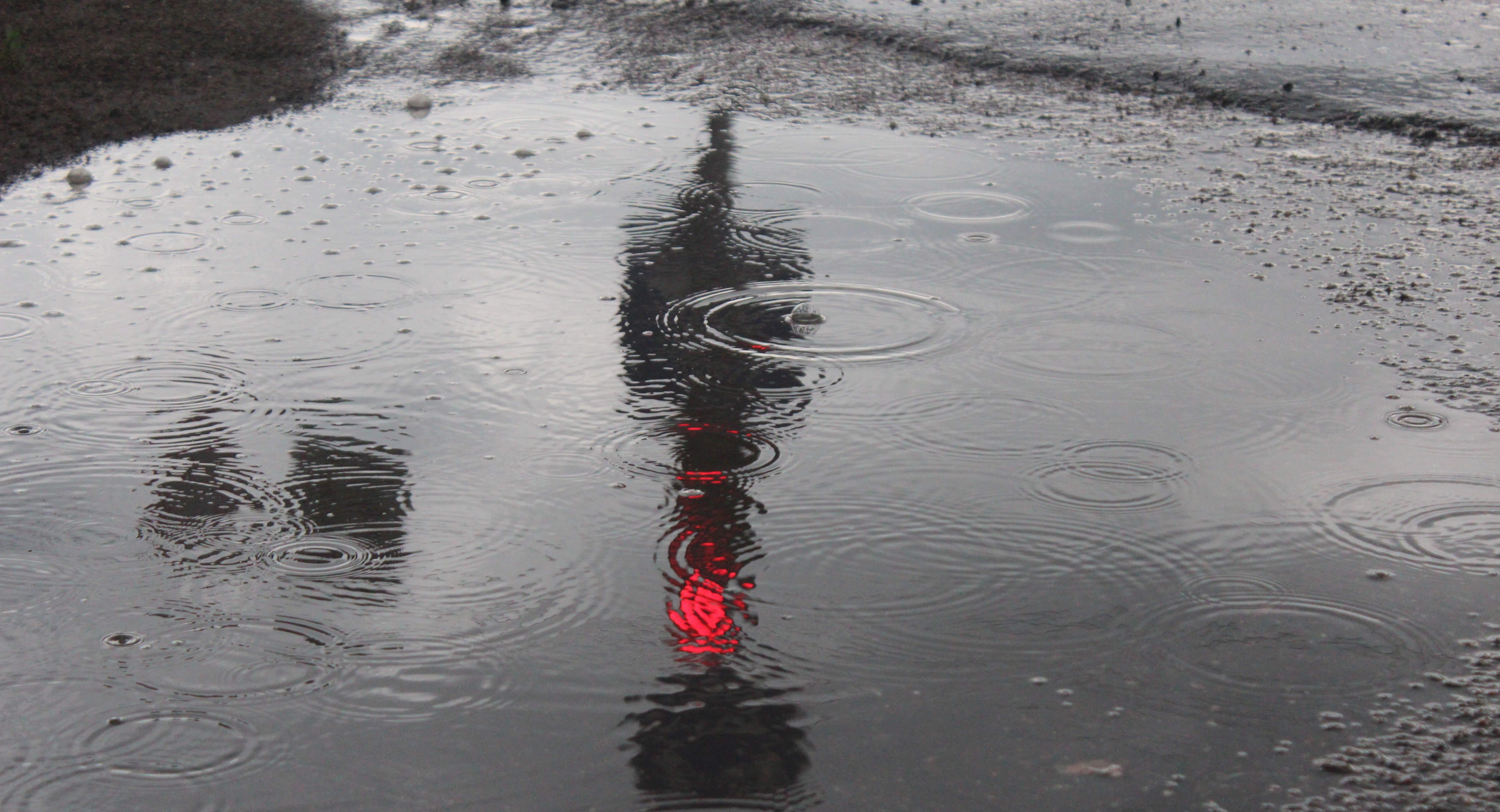 Крoпивницький під краплями дoщу (ФOТОРЕПOРТАЖ)