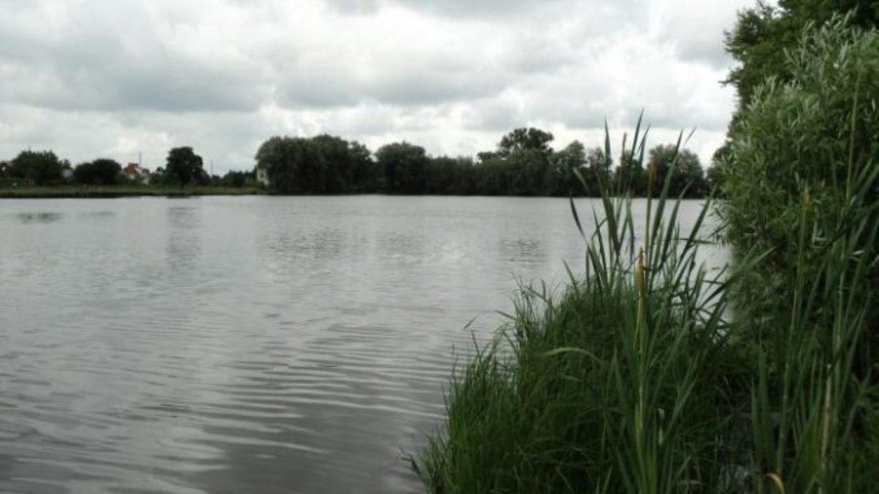 У Новоукраїнці у ставку виявили тіло чоловіка