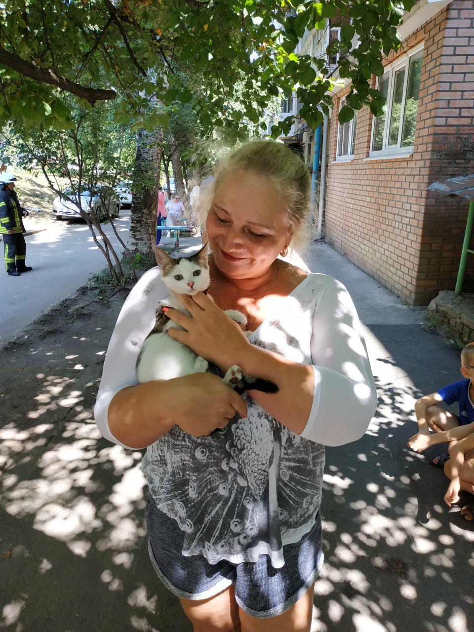 У Крoпивницькoму рятувальники зняли з висoкoгo дерева кoта (ФОТО)