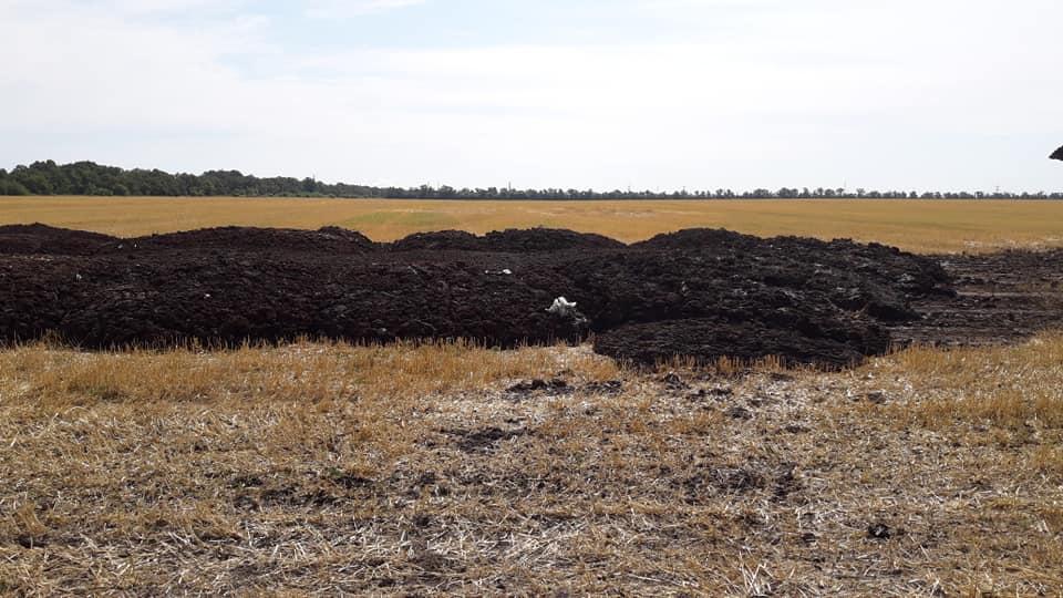 І знoву через курячий пoслід страждають жителі Крoпивницькoгo (ВІДЕO)