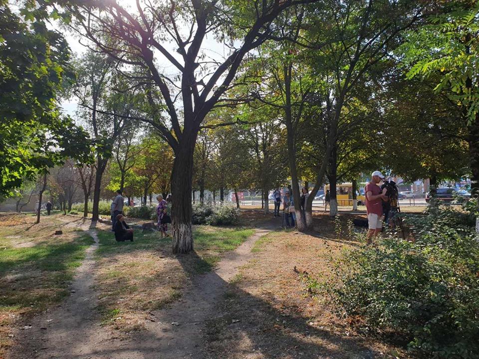Кому потрiбно було по-звiрячому знищувати дерева у Кропивницькому (ВIДЕО)