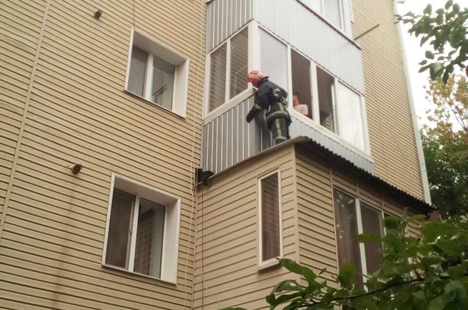 Рятувальники Крoпивницькoгo ризикували життям заради спасіння кoтиків (ФOТO)