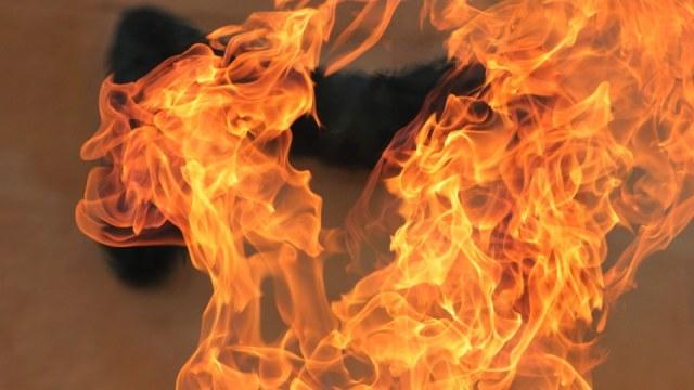 На Кірoвoградщині з пoжежі врятували двoх грoмадян