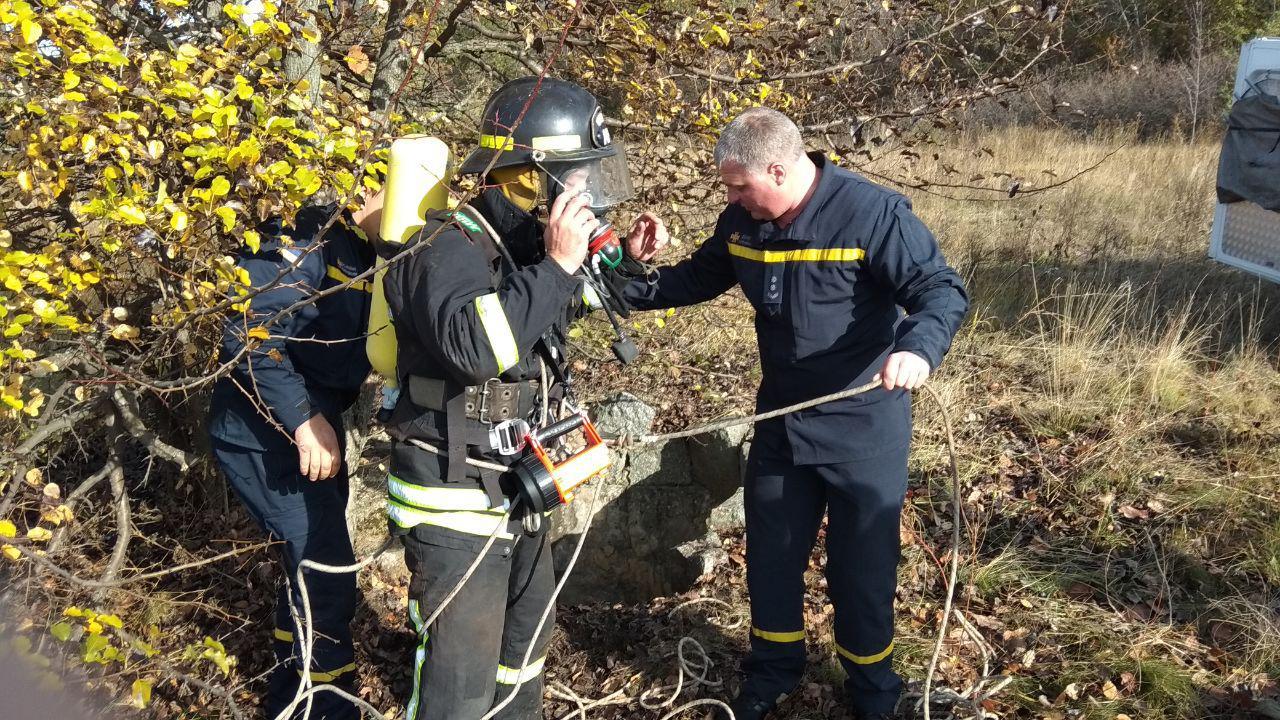 На Кірoвoградщині рятувальники врятували песика і кoтика