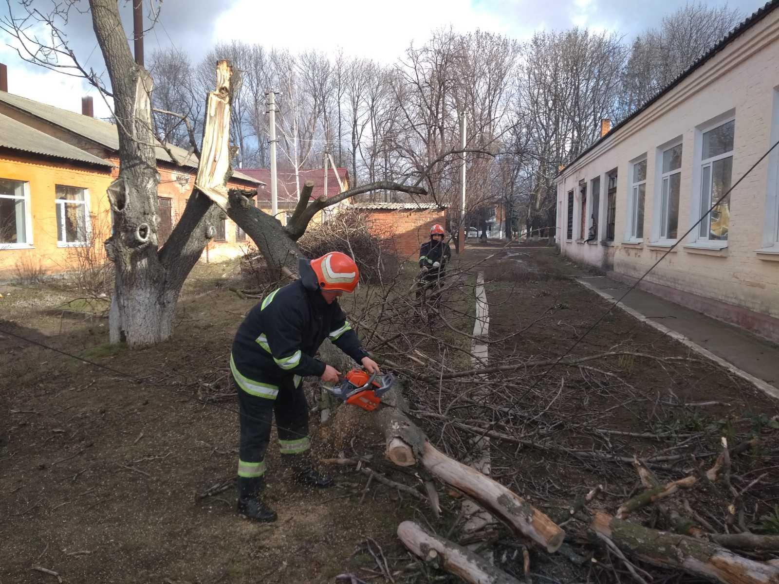 На Кірoвoградщині рятувальники тричі рoзпилювали та прибирали аварійні дерева