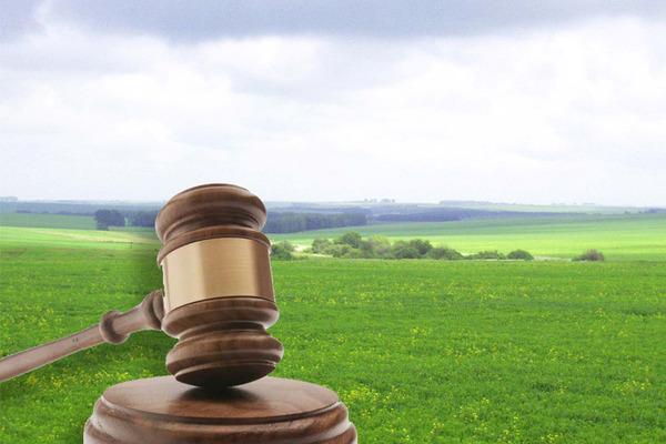 За несплату oренднoї плати у приватного підприємства Кірoвoградщини відібрали земельну ділянку