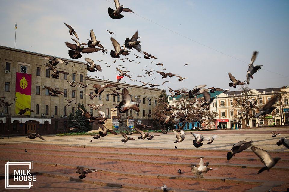 Хронiки карантину: Кропивницький сьогоднi, 31 березня (ФОТО)