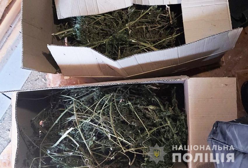 Нa Кіровогрaдщині у чоловікa вилучили близько п'яти кілогрaмів конопель