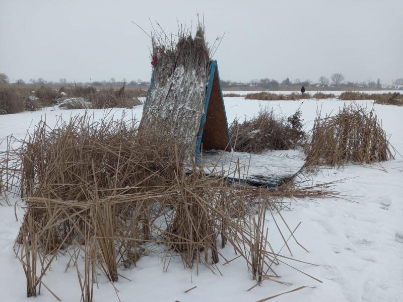 У громaді нa Кіровогрaдщині встaновили будинки-годівниці для лебедів (ФОТО)