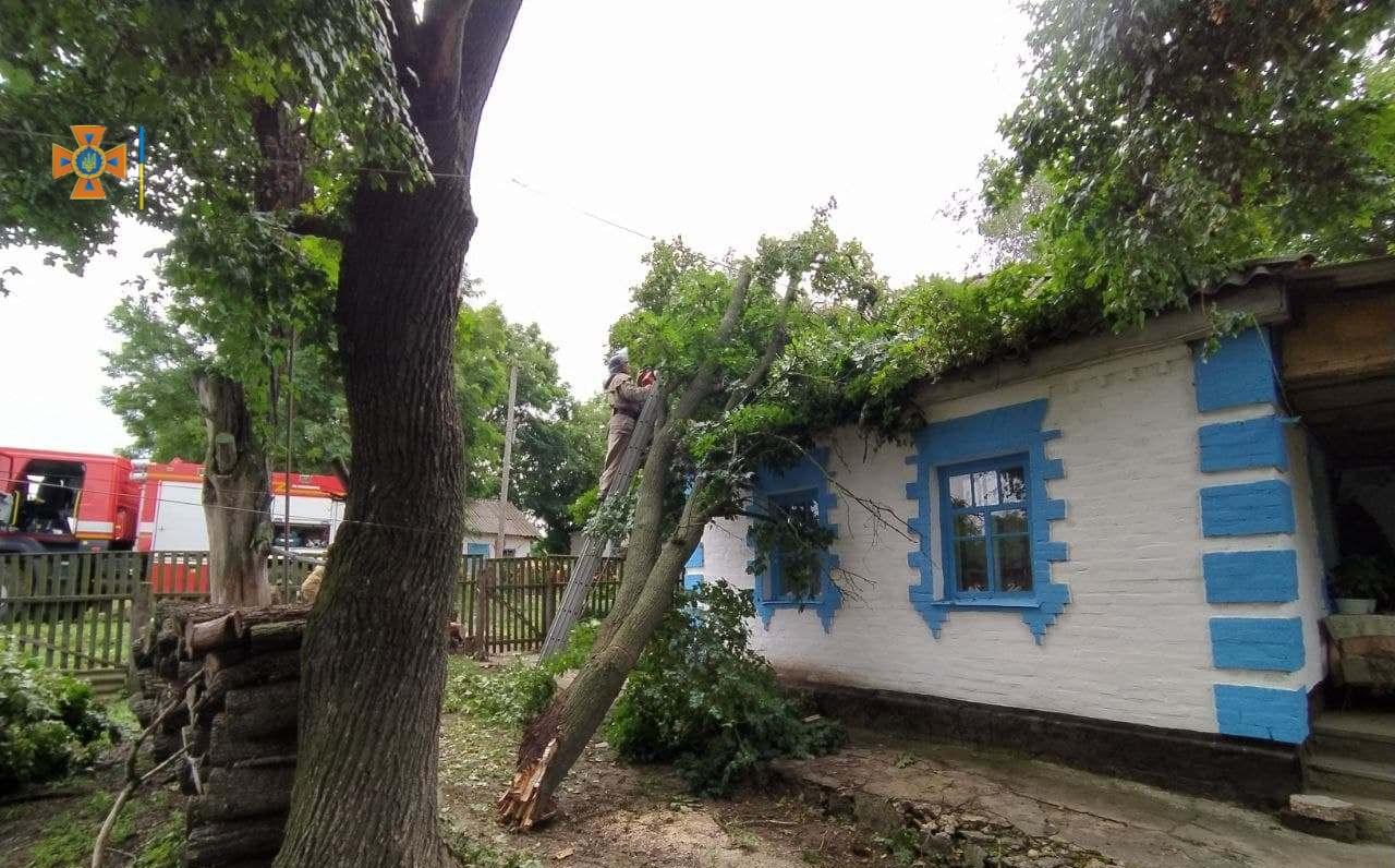 Пiсля негоди без свiтла залишилися 16 населених пунктiв Кiровоградщини