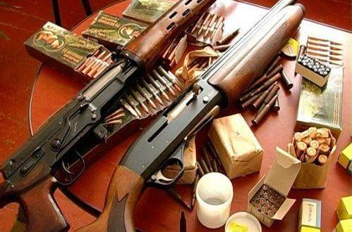 Двоє на Кіровоградщини розстріляли з рушниці худобу
